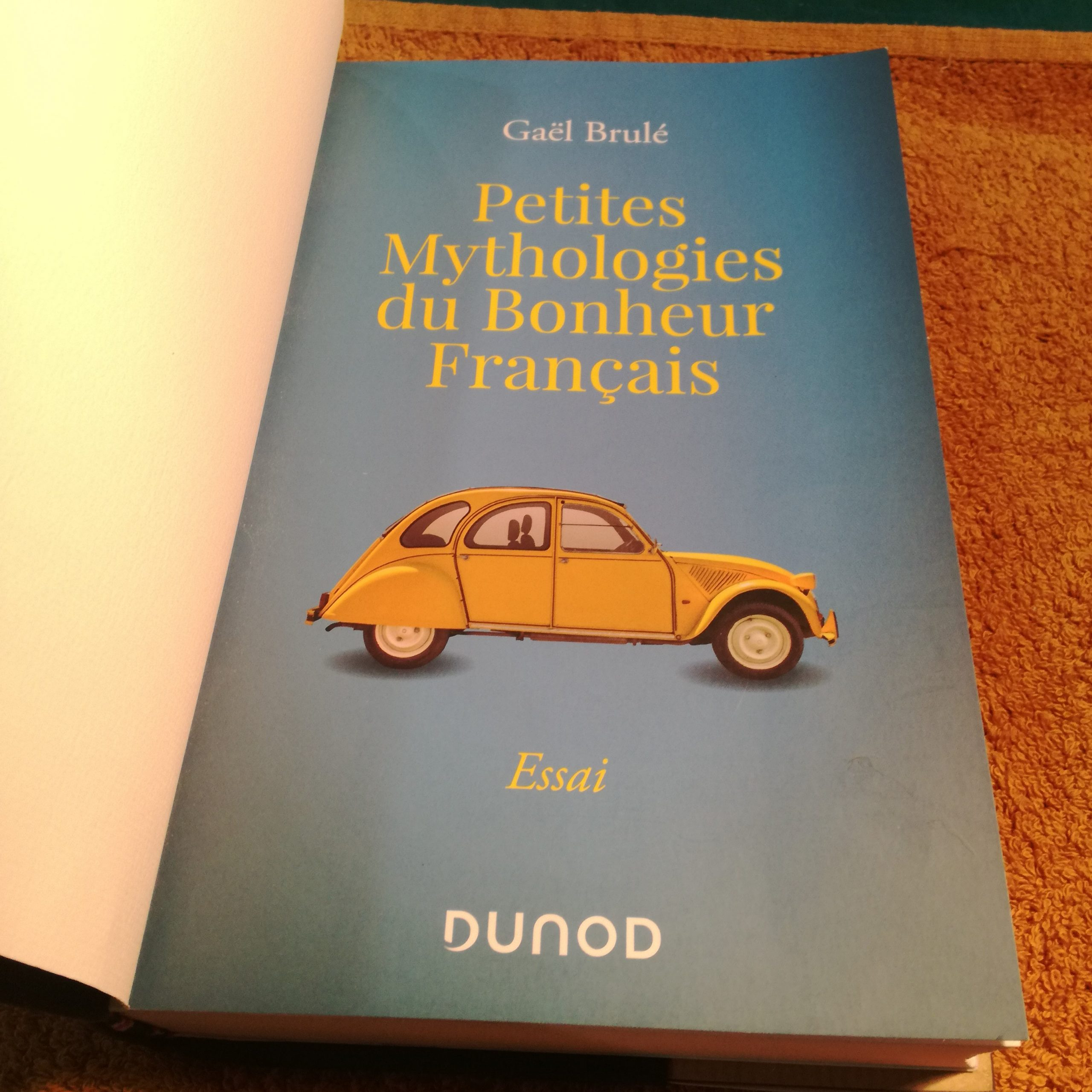 Bonheur français, gael brule, sarrant, reliure, les ames papier